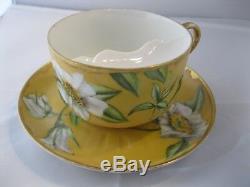 1882 Limoges Haviland Mustache Tea Cup & Saucer CFH GDM Oversized Rare France