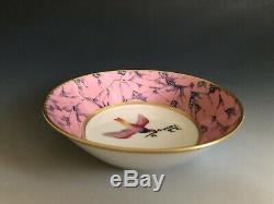 Ancienne Manufacture Royale De Limoges France Porcelain Cup & Saucer Marbre Rose