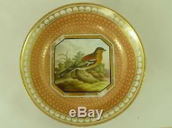 British Birds Chamberlains Worcester Porcelain Cup & Saucer Hand Painted Marked