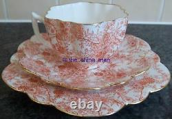 Pre SHELLEY WILEMAN china DAISY CUP SAUCER PLATE TRIO JUNGLE SHEET 4129 pattern