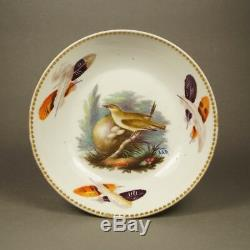 Rare Regency Wedgwood Porcelain Cup And Saucer Aaron Steele Birds 1815