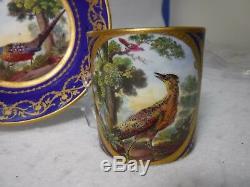 SEVRES Porcelain CUP and SAUCER Set Le Faison and Le petit Diable de Mer